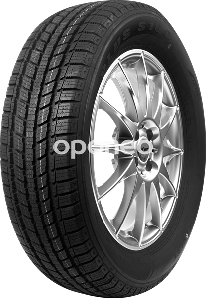 Zeetex Ice-Plus S100 205/55 R16 91 H